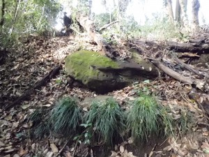 三条塚古墳の天井石