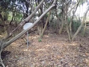 三条塚古墳跡