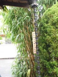 土方歳三手植えの矢竹
