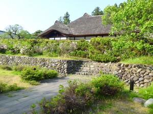 中畑陣屋の生垣