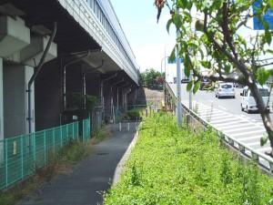 名神高速道路の高架下
