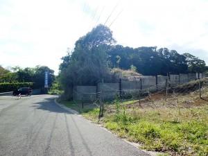 木更津中央霊園前の道