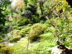 旧茗荷屋庭園