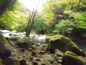 堂ヶ島渓谷の風景