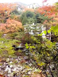 宮ノ下を仰ぐ堂ヶ島温泉