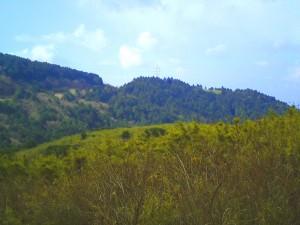 熱海峠から見た風景