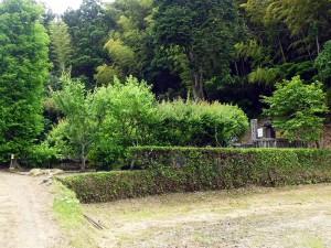 勝隆寺佐貫藩主阿部家の墓所