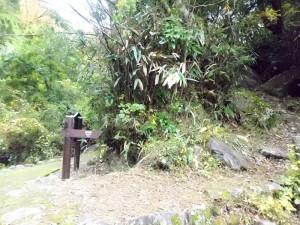 宮城野への山道