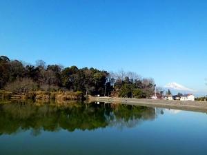 韮山城址の城池