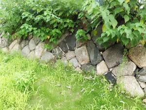 伏見奉行所跡の石垣