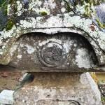 仰樹院の丸の内三頭左巴下に一文字家紋