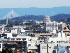 岡崎城天守閣から見た大樹寺