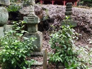 亀姫と松平泰親の墓