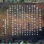 ドンロドリゴ上陸地碑日本語
