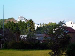 忠勝公園から見た大多喜城
