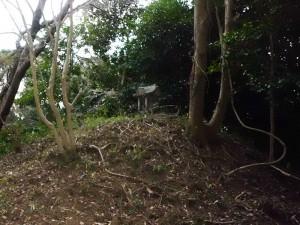 鹿野山の石祠