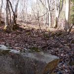 藤沢城内の石垣跡