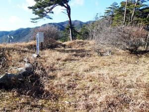 藤沢城山頂の土塁に囲まれた平地