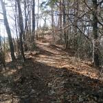 9藤沢城頂上に向かう山道