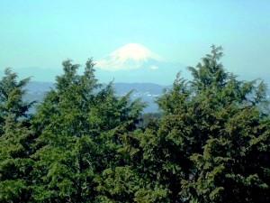鹿野山から見た富士山