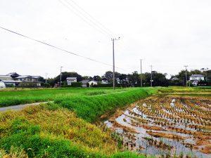 下総国匝瑳郡小笹村